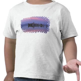 Puesta del sol en el mono lago, CA Camiseta