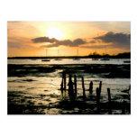 Puesta del sol en el puerto de Bosham, Sussex del Tarjeta Postal