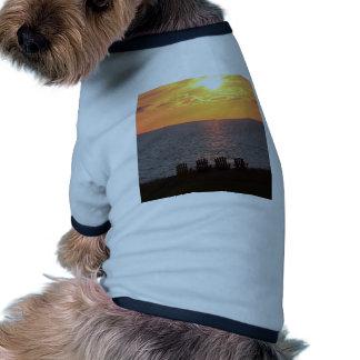 Puesta del sol en Isla del Principe Eduardo Camisas De Mascota