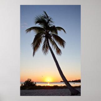 Puesta del sol en Key West Poster