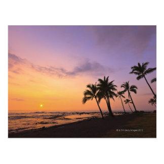 Puesta del sol en la bahía de Kahaluu en Kona Haw Postales