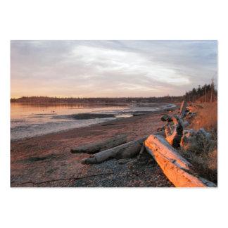 Puesta del sol en la bahía del abedul tarjetas de visita grandes