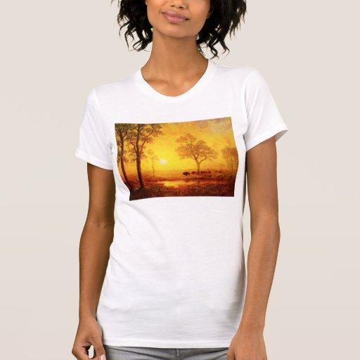 Puesta del sol en la camiseta de la montaña