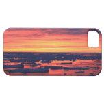 Puesta del sol en la estación de Palmer iPhone 5 Case-Mate Protector
