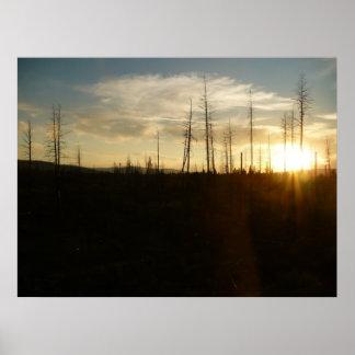 Puesta del sol en la foto del desierto póster