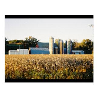 Puesta del sol en la granja tarjetas postales