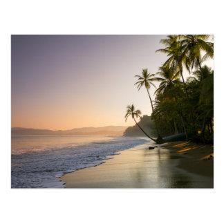 Puesta del sol en la playa franjada palma, Costa Tarjetas Postales