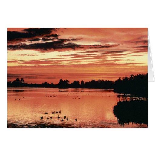 Puesta del sol en la reserva del nacional de Seney Tarjeta De Felicitación