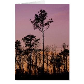 Puesta del sol en la tarjeta de felicitación púrpu