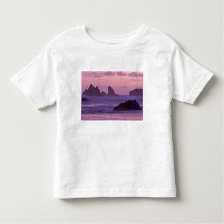 Puesta del sol en las pilas del mar de la playa de remeras