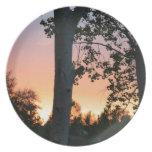 Puesta del sol en los árboles
