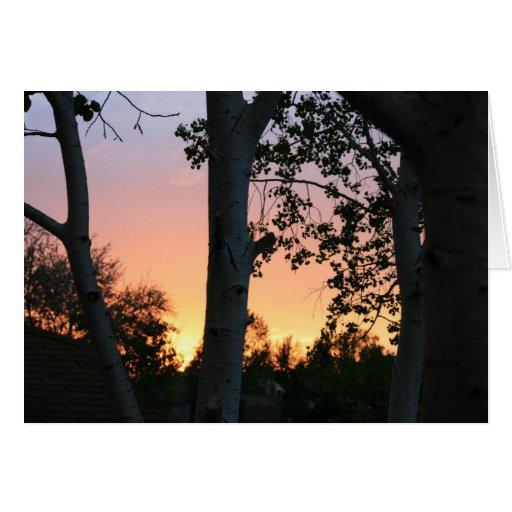 Puesta del sol en los árboles tarjetón
