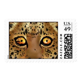 Puesta del sol en los ojos de un leopardo sellos