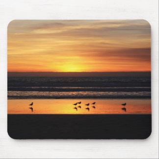 Puesta del sol en San Diego Tapete De Raton