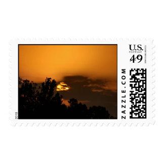 Puesta del sol en sello de la Florida