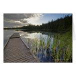 Puesta del sol en un pequeño lago tarjetón