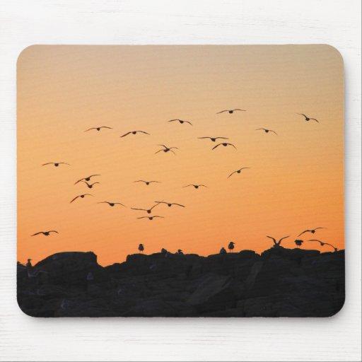 'Puesta del sol Flight Mousepad