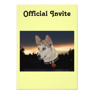 """Puesta del sol fornida del perro invitación 5"""" x 7"""""""