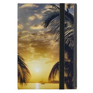 Puesta del sol iPad mini protectores