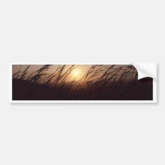 Puesta del sol grasses jpg pegatina de parachoque