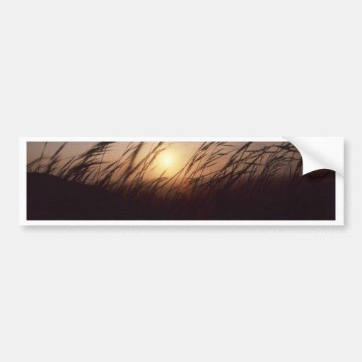 Puesta del sol grasses.jpg pegatina de parachoque