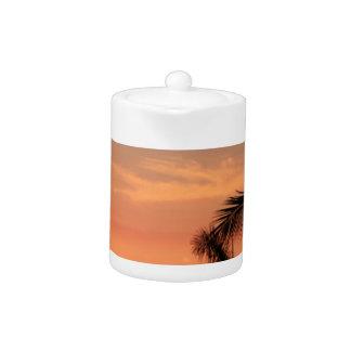 Puesta del sol hawaiana anaranjada, pájaros y palm