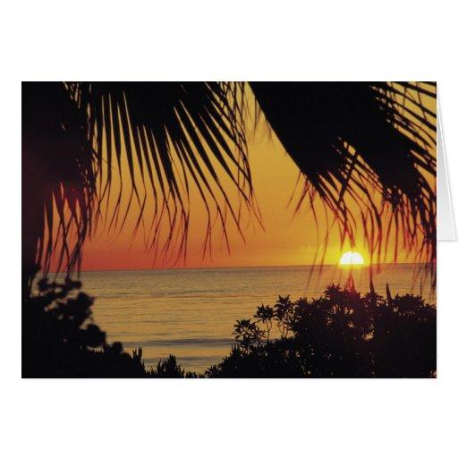 Puesta del sol hawaiana tarjeta de felicitación