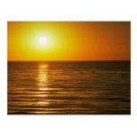 Puesta del sol hermosa: Cardiff-Por--Mar, Californ Tarjetas Postales