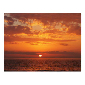Puesta del sol hermosa de la Florida del amarillo Tarjetas Postales