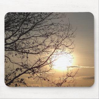 Puesta del sol hermosa de Mousepad con los branchs Alfombrillas De Raton