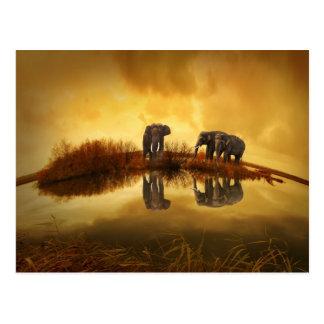 puesta del sol hermosa de Tailandia del elefante Postal