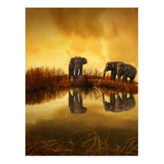 puesta del sol hermosa de Tailandia del elefante Tarjetas Postales