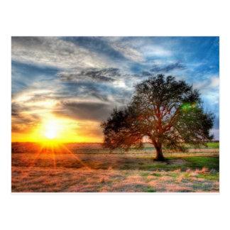 Puesta del sol hermosa postal