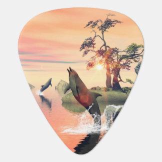 Puesta del sol hermosa uñeta de guitarra