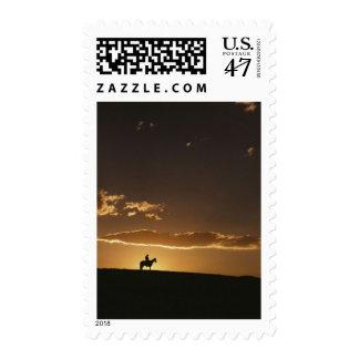 Puesta del sol impresionante del vaquero sellos