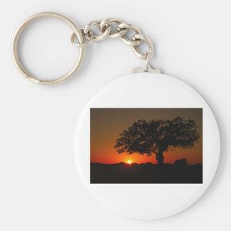 Puesta del sol Live Oak Llavero Redondo Tipo Pin