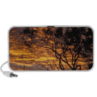 Puesta del sol, parque nacional de Uluru-KATA Tjut PC Altavoces
