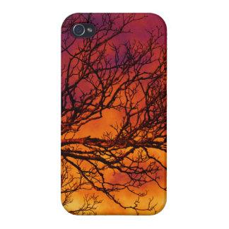 Puesta del sol pintada iPhone 4 fundas