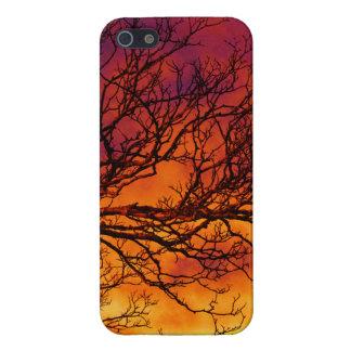 Puesta del sol pintada iPhone 5 funda