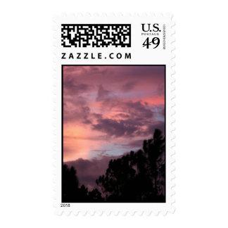 Puesta del sol púrpura y rosada de la Florida Sellos
