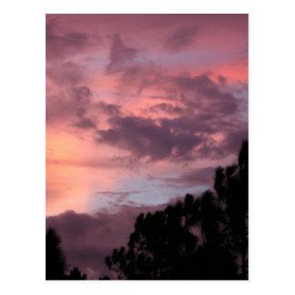Puesta del sol púrpura y rosada de la Florida Tarjetas Postales