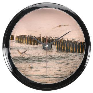 Puesta del sol roja, rompeolas y gaviotas relojes aqua clock