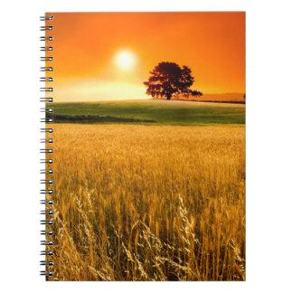 Puesta del sol roja sangre cuadernos