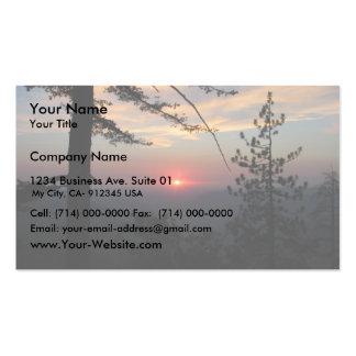 Puesta del sol rosada con el árbol y las nubes de  tarjetas de visita