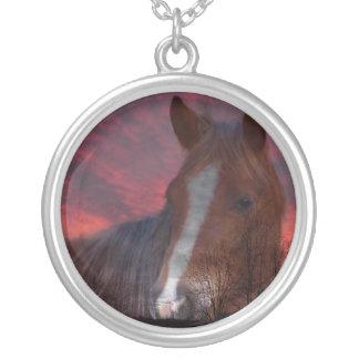 Puesta del sol rosada con la sombra del caballo colgante redondo