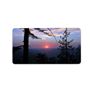 Puesta del sol rosada con los árboles y las nubes  etiqueta de dirección