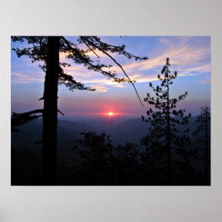 Puesta del sol rosada con los árboles y las nubes posters