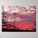 Puesta del sol rosada impresiones