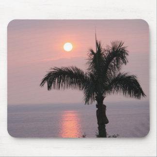 Puesta del sol rosada tropical y palma alfombrilla de ratones