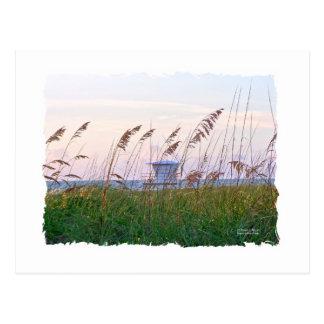 Puesta del sol rosada y púrpura de la playa de la  postales